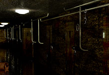 MB-Asylum, dark prison cell, corridor with blood on the doors and hospital lights