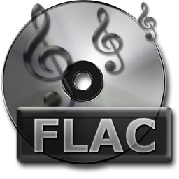 Gray Simple FLAC Lossless File free Stock PNG Icon for Web-Design